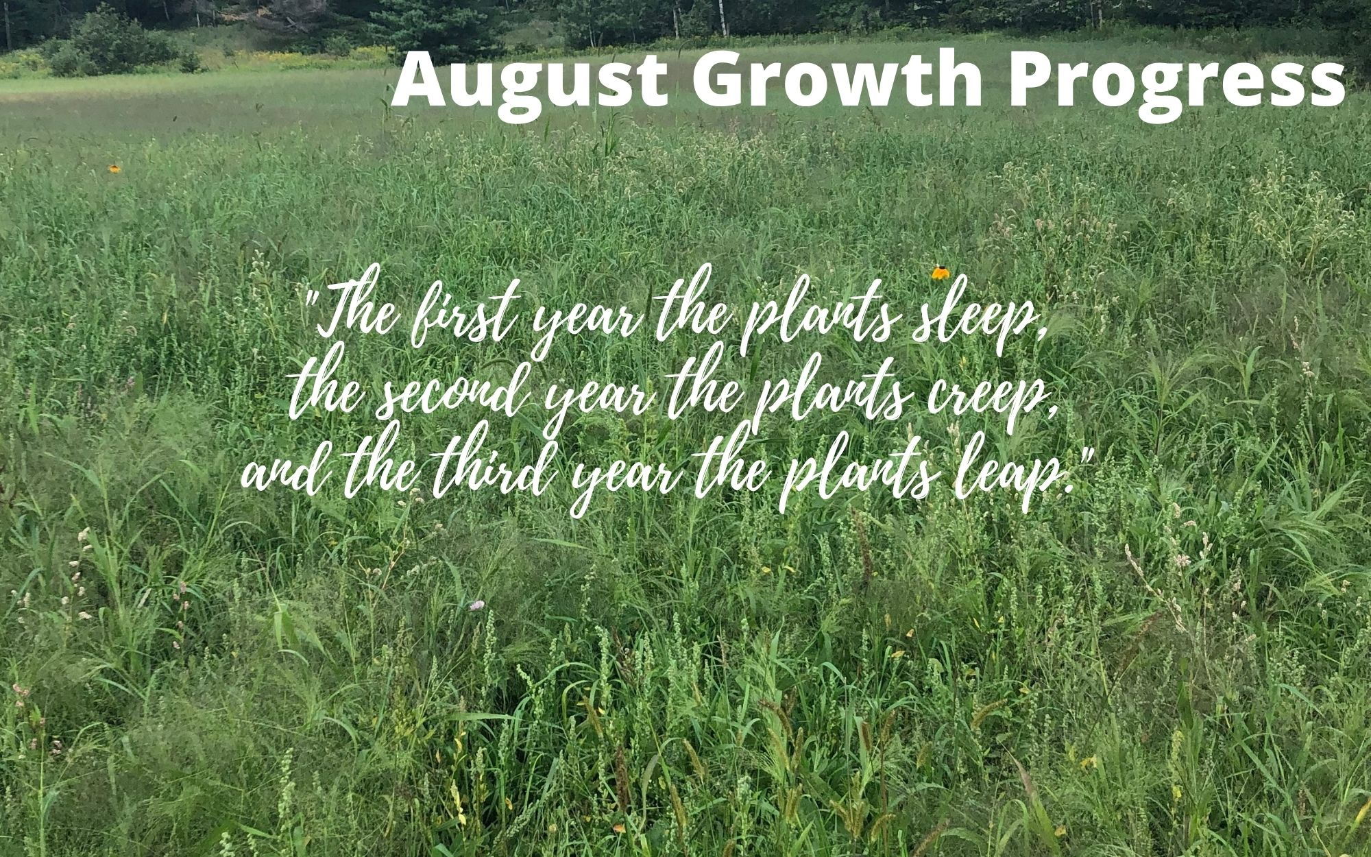 August Growth